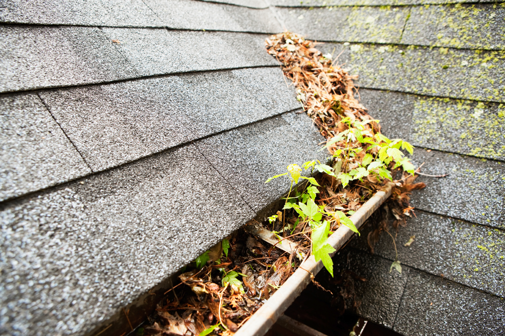 HOW GUTTER MAINTENANCE KEEPS YOUR HOME SAFE